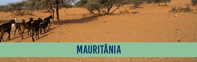 banner_mauritania