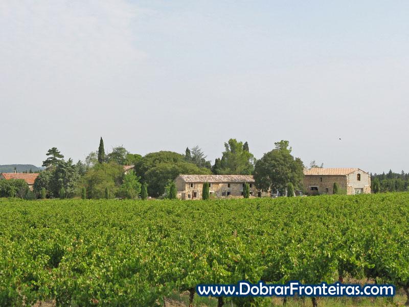 As vinhas são uma constante nesta região de França