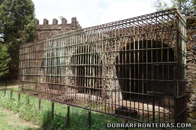 As jaulas dos leões reais em Gondar, Etiópia