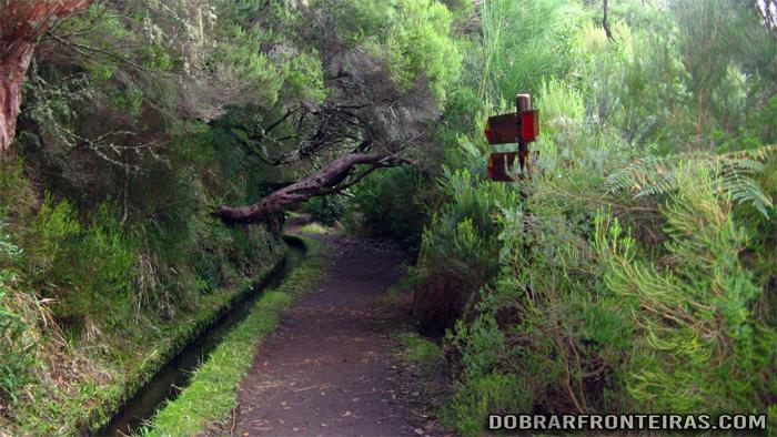 Levada das 25 Fontes, Ilha da Madeira