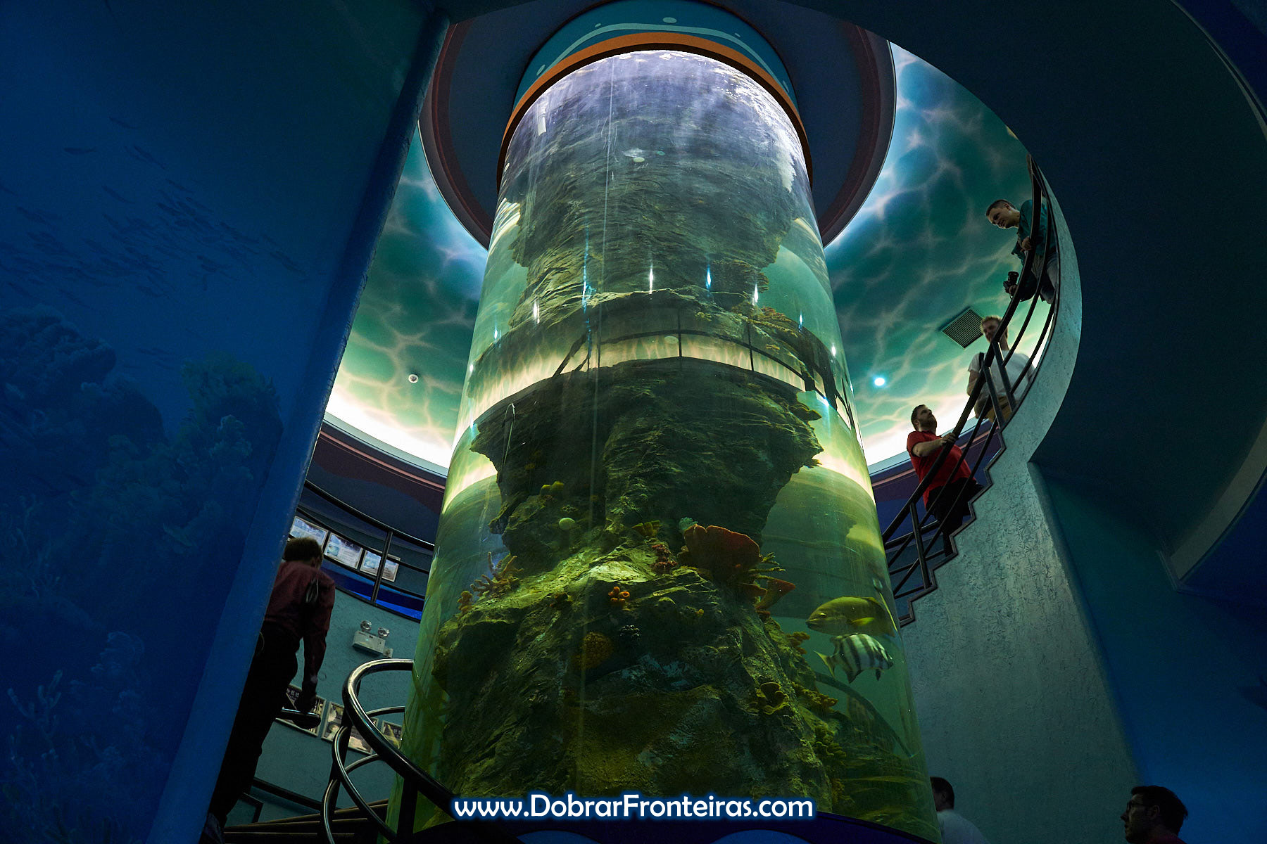 aquário cilindrico