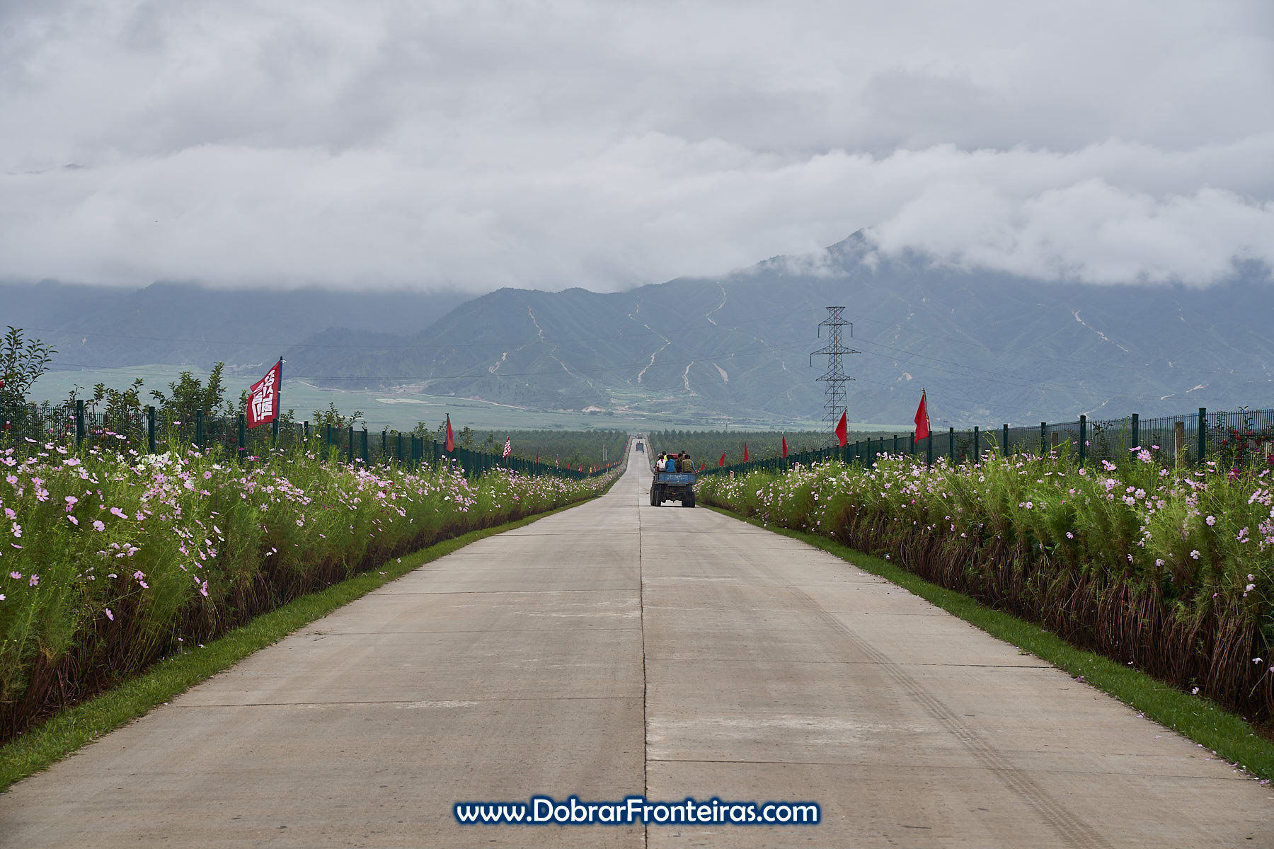 Estrada com flores pelo meio dos pomares com bandeiras vermelhas e montanhas ao fundo
