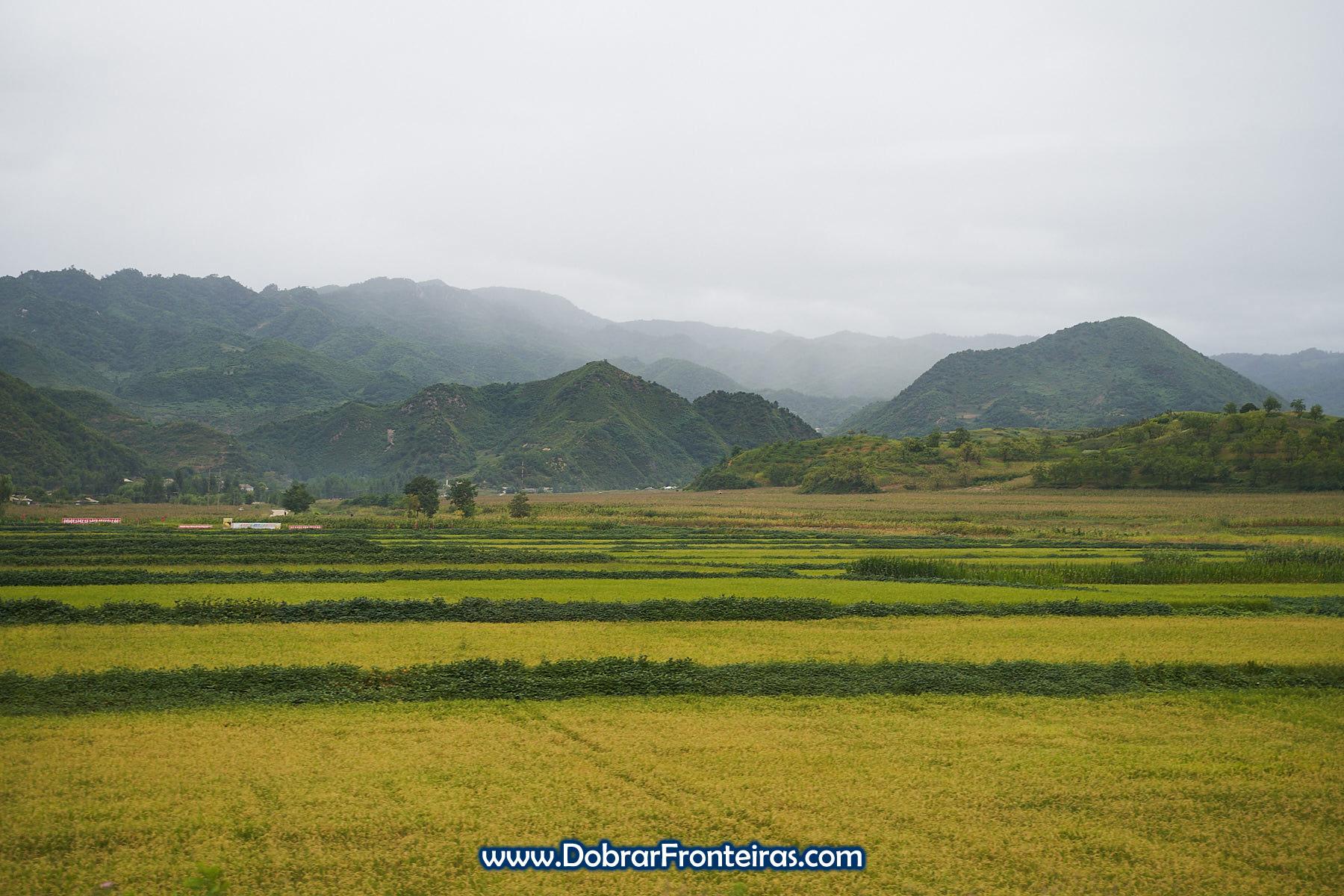 Campos de arroz e soja com montanhas ao fundo na Coreia do Norte