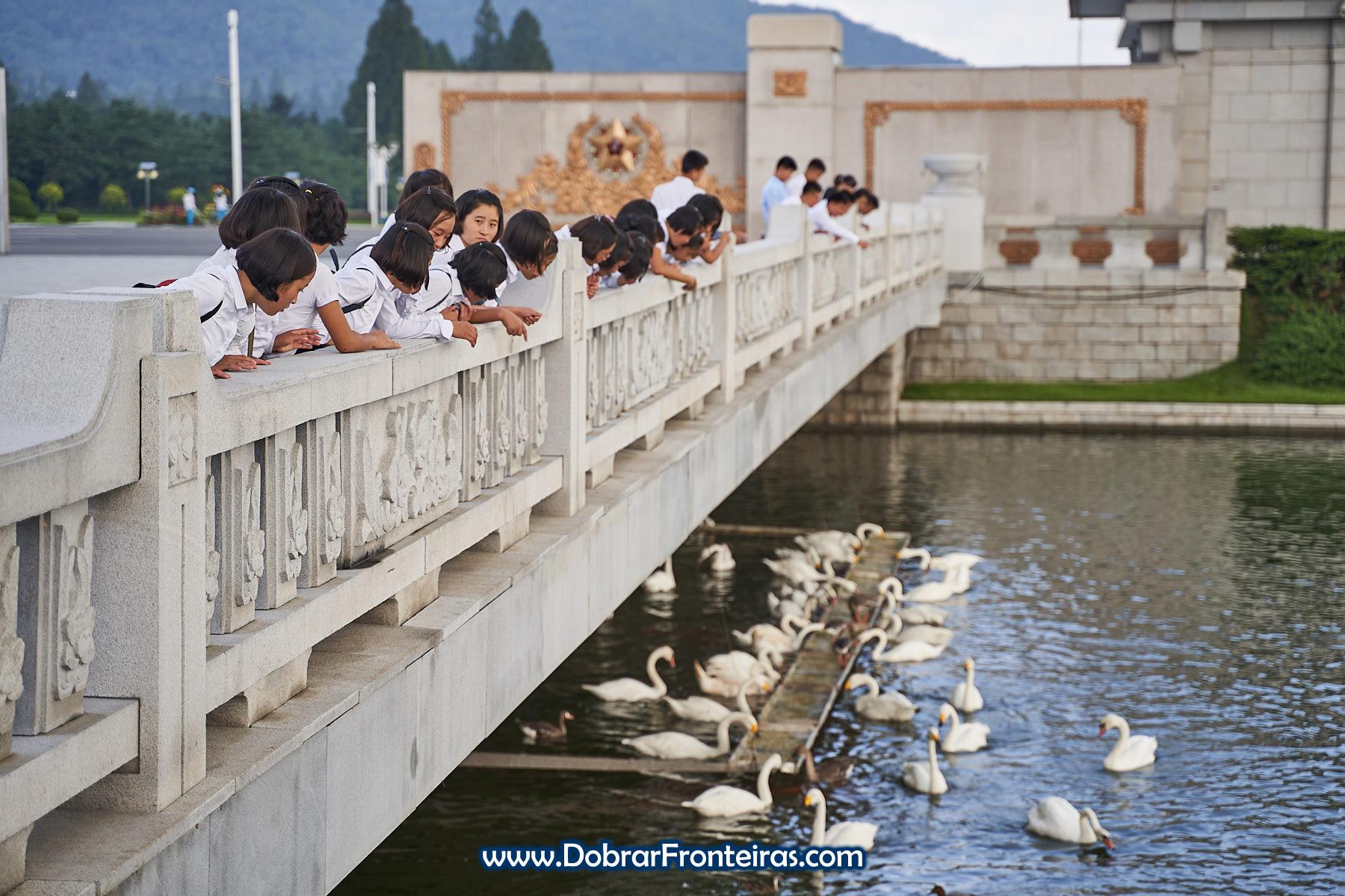 raparigas sobre ponte a dar comida a cisnes