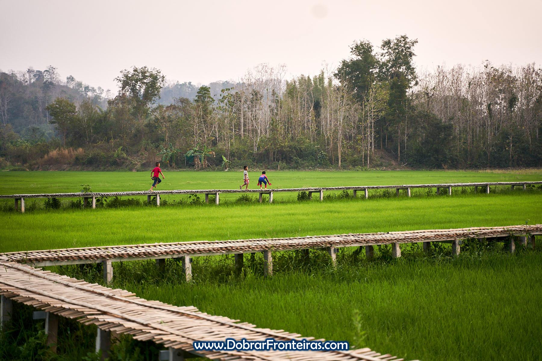 crianças a brincar em passadiço de bambu sobre campos de arroz na Tailândia