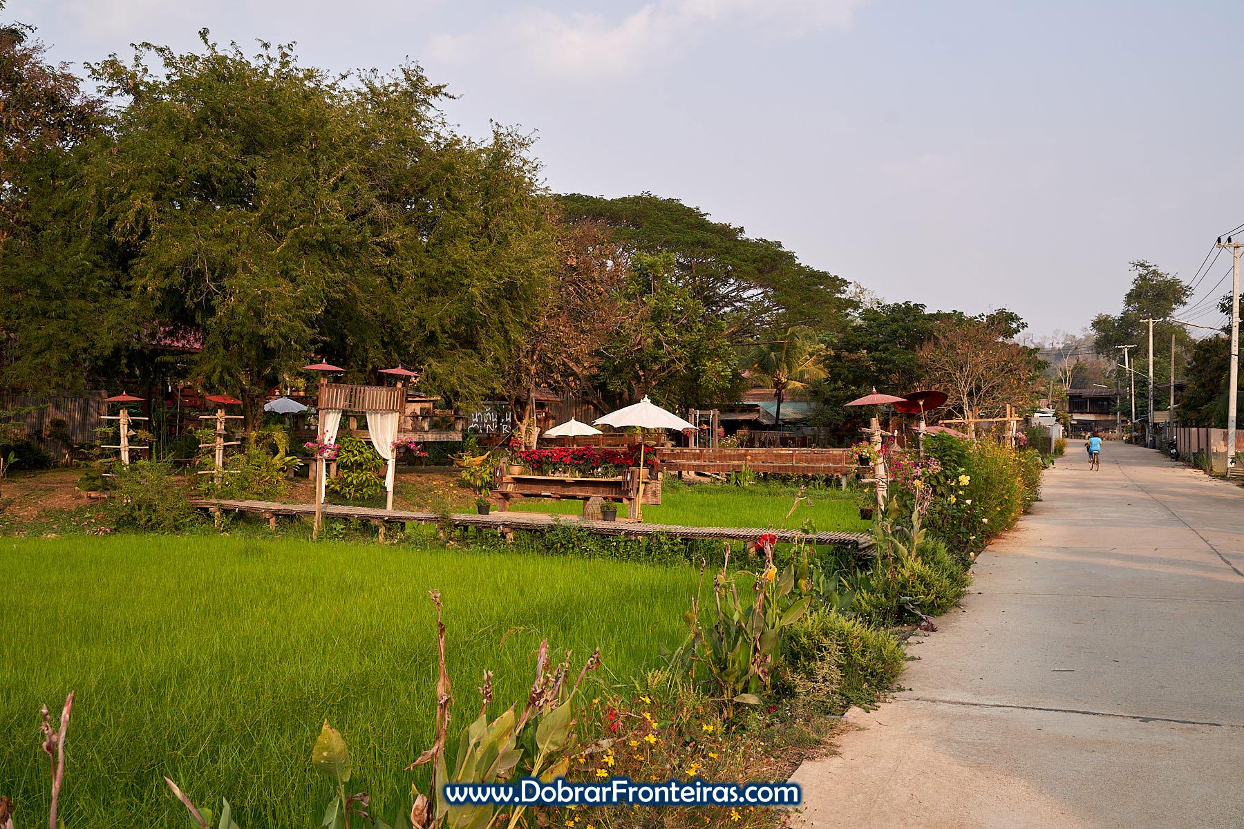 rua de aldeia na Tailandia com campo de arroz