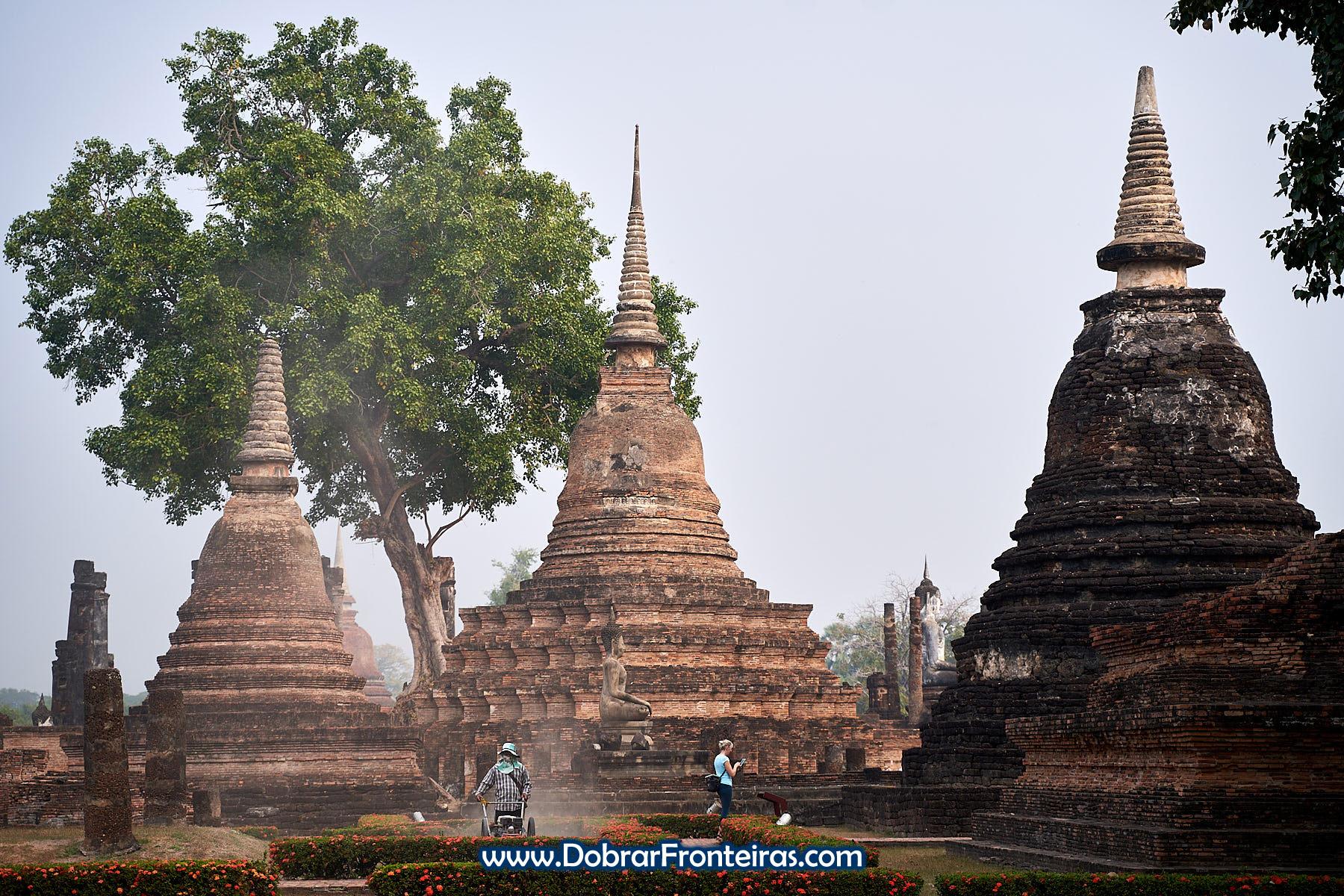 Grande árvore e estupas de tijolo em Sukhothai, Tailândia