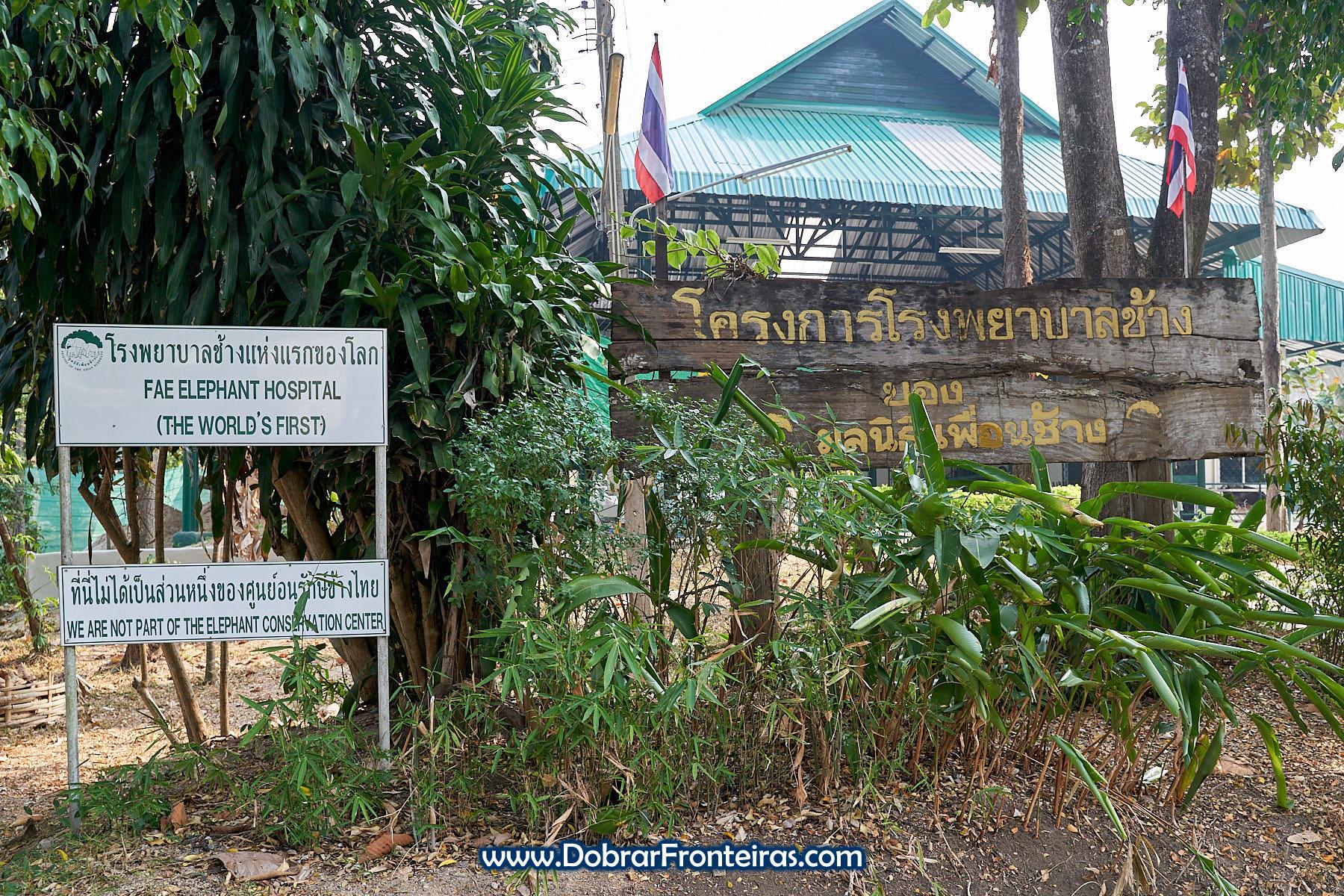 Hospital de elefantes FAE na Tailândia