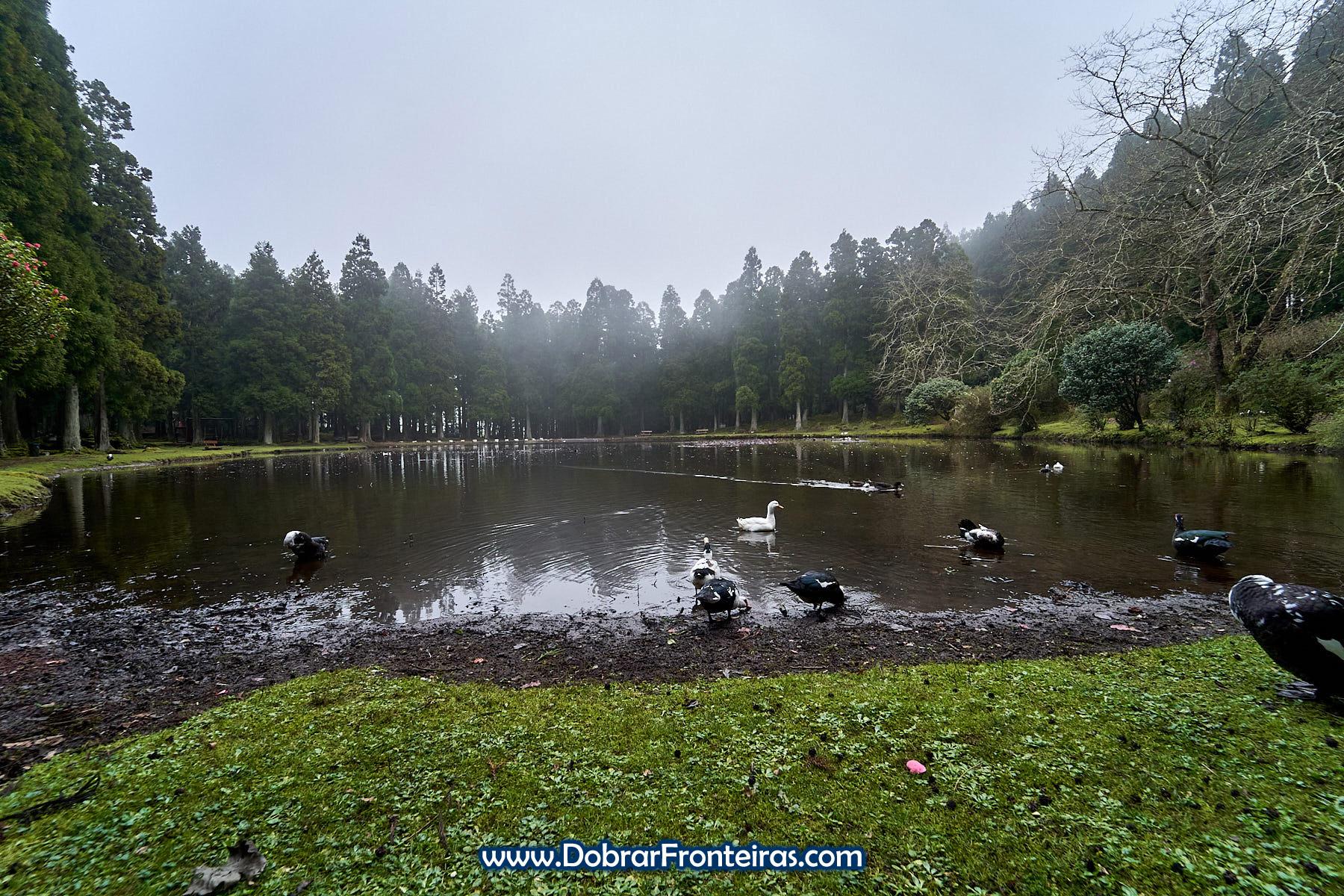 Lagoa das Patas