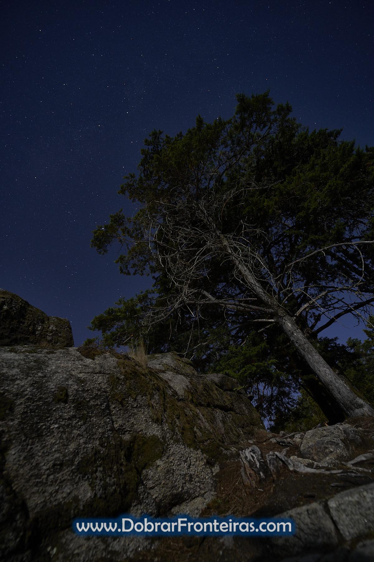 Céu noturno estrelado no Gerês