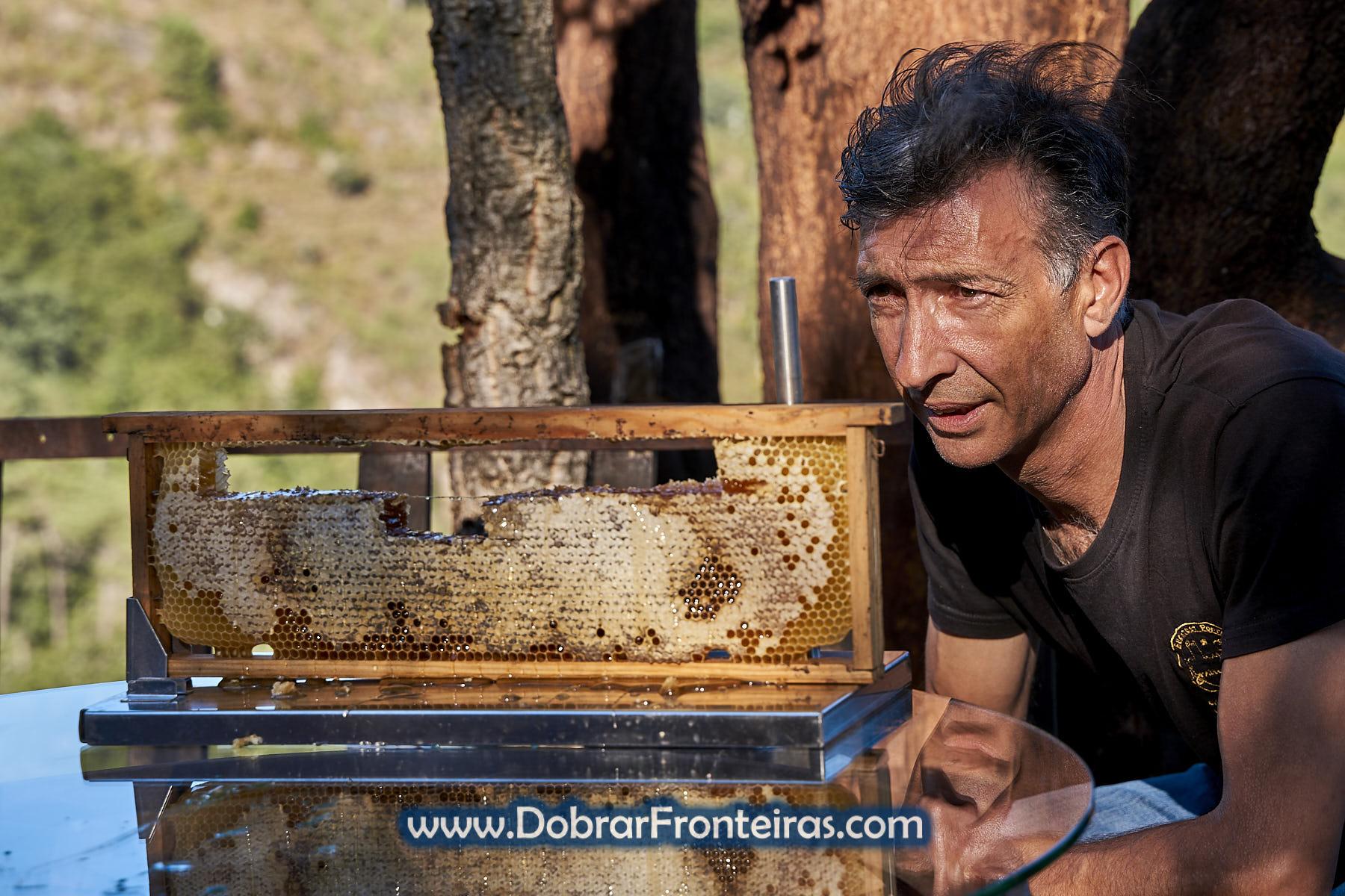 Paulo Gonçalves apicultor Buckfast junto de favo de mel