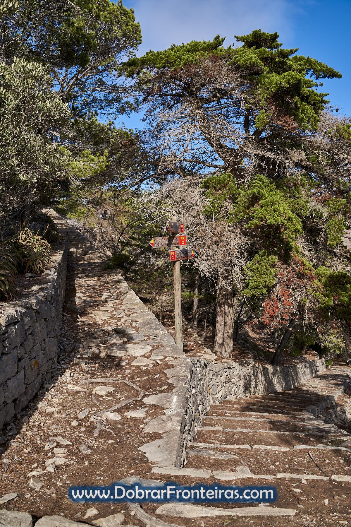 percurso pedestre do Pico Castelo no Porto Santo