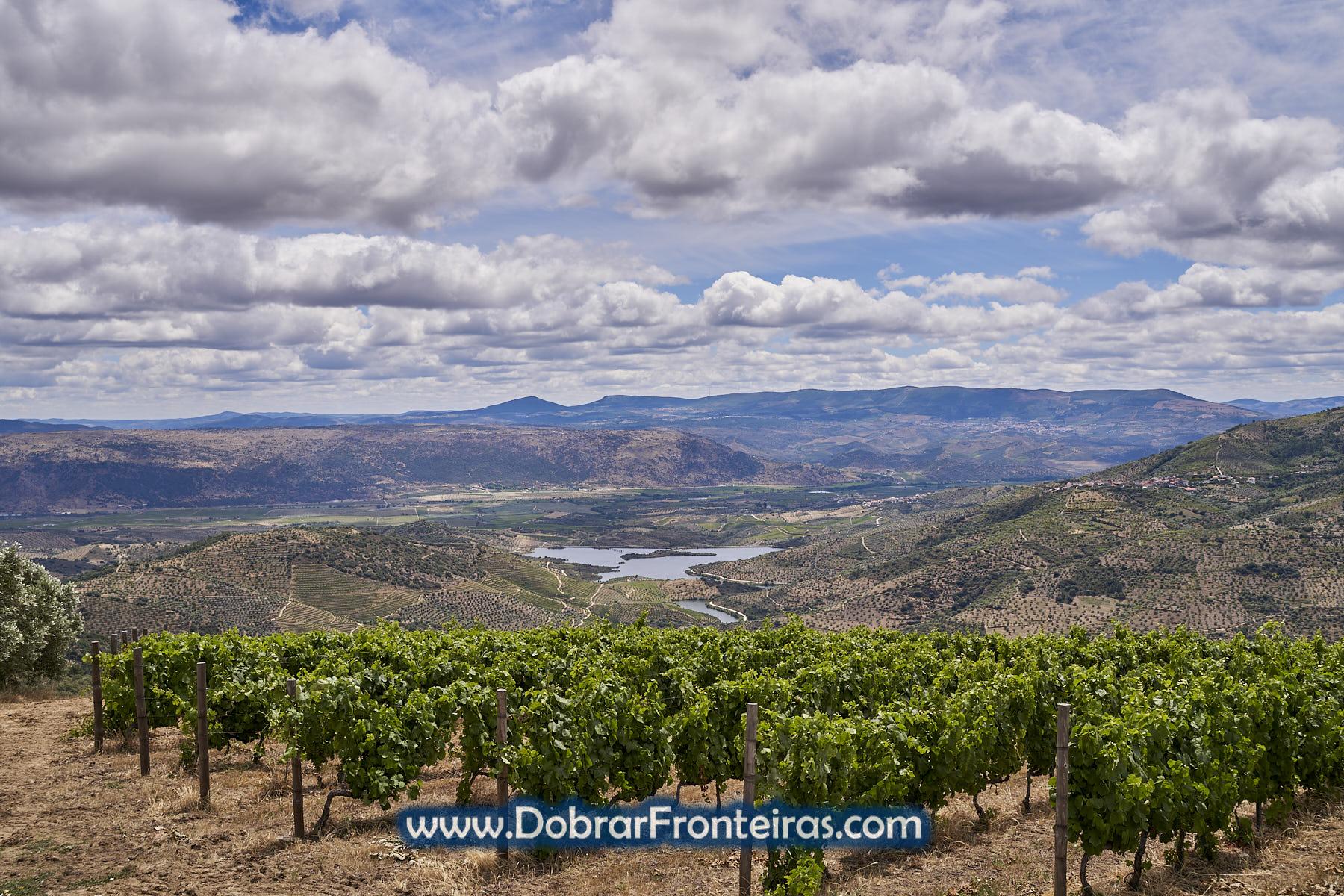 paisagem da vinha com o vale da Vilariça ao fundo
